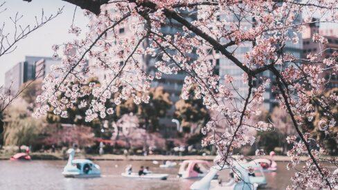 広場・公園