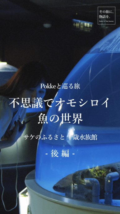 【後編】Pokkeと巡る旅 不思議でオモシロイ 魚の世界~サケのふるさと 千歳水族館 ~